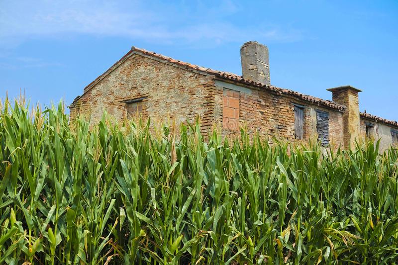 Valorizzazione della produzione agricola, Provincie di Padova e Rovigo